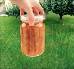 Winter honey stewed apricots Stew, Mason Jars, Sweet Treats, Water Bottle, Honey, Mugs, Tableware, Winter, Food