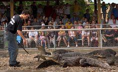 Reptile Gardens, Rapid City SD