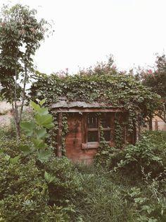 어린이대공원, 숲, 삐그덕, 작은 집, mini home