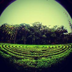 Parque Malwee em Jaraguá do Sul, SC