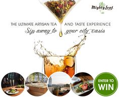 Enter to win a Gift Set of Mighty Leaf Tea and a San Francisco Getaway! - Virtually Yours
