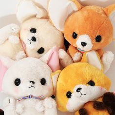 This super cute lineup of Amuse plushies is inspired by the most adorable foxes you're ever likely to see - Fennec Foxes. Found in the deserts of North Africa, these usual creatures are marked by their oversized ears! These adorable plushies are no different with their cute, giant ears, and this special series sees them all dressing in stripes - so cute!  There are four of these cute foxes availab... #plushie