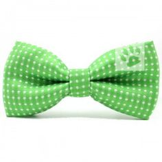 Leuke Groene hondenstrik