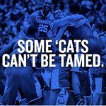 """446 Likes, 1 Comments - This is a fanpage, Go Cats! (@bbnkentuckywildcats) on Instagram: """"@thetreyturner #BBN"""""""