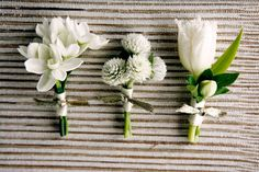 paperwhite, clover, and tulip boutonnieres - I like the one on the left