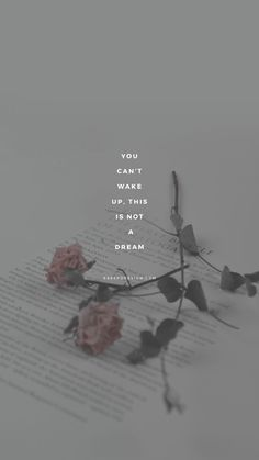 iPhone Wallpaper Quotes from Uploaded by user Tumblr Quotes, Lyric Quotes, Girl Quotes, Lyrics, Qoutes, Tumblr Wallpaper, Wallpaper S, Wallpaper Quotes, Psycho Wallpaper