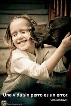 una vida sin perros es un error.