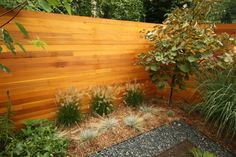 Portfolio-New Eco: Urban Landscape Design- landscaping,landscape ideas & garden design