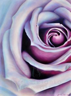 Large wall art oil painting of a purple rose colorful flower painting macro photography floral decor bedroom art living room art Rose Oil Painting, Rose Paintings, Rose Violette, Plant Drawing, Floral Bedroom Decor, Bedroom Art, Purple Roses, Large Wall Art, Macro Photography