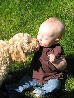 My future baby/child WILL be licked and kissed by dogs, and he/she will LOVE it.