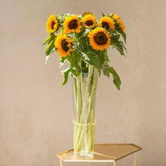 KW 29: Sonnenblumen für die Tisch- und Bodenvase