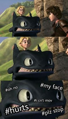 33 Ideas for how to train your dragon hiccstrid funny Httyd Dragons, Dreamworks Dragons, Disney And Dreamworks, How To Train Dragon, How To Train Your, Dragon Memes, Hiccup And Astrid, Dragon Rider, Night Fury
