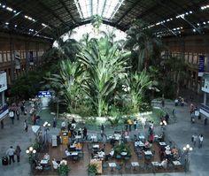 España-Madrid-Estacion de Trenes Puerta de Atocha-Jardin Tropical