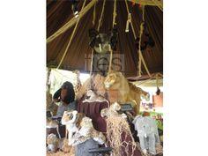 Decoración de Fiestas con motivo de Selva y Safari