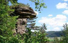 Markušovský skalný hríb