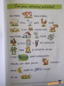 specifické poruchy učení dyslexie dysgrafie