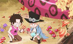 Ace, Sabo & Luffy