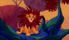 If you love anything Disney, then you will totally ace this quiz! If you've seen all Disney films, this one is for you! Le Roi Lion Disney, Simba Disney, Walt Disney, Disney Lion King, Disney Quiz, Disney Wiki, Disney Magic, Lion King Songs, Lion King Soundtrack