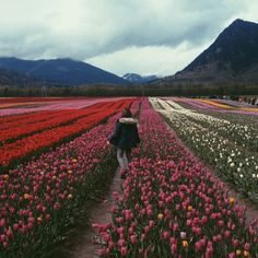 i walk down the pathway of flowers not knowing where I'm going, but knowing its going to be OKay
