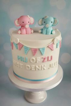 Gender reveal double barrel cake / baby geslachts taart