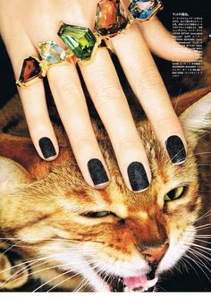 A 5 stone Alexis Bittar ring, black sparkly nail polish, and ferocious feline make a magical combination in Vogue Japan November 2012 www. The Bling Ring, Bling Bling, Vogue Japan, Crazy Cat Lady, Girls Best Friend, Jewelry Accessories, Jewelry Rings, Jewelry 2014, Nail Art