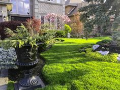 Sie möchten aus Ihrem Garten einen Ort der Sinnlichkeit erschaffen, der zum Wohlfühlen und Seele baumeln lassen einlädt? Der Sie den Stress des Alltags vergessen lässt, Ihnen Energie spendet und gleichermaßen ein Rückzugsgebiet der Harmonie für Ihre Familie und Freunde ist?  Pflanzplan hilft Ihnen dabei, diesen Traum wahr werden zu lassen und bringt das Paradies zu Ihnen nach Hause. #Garten #Gartenplanung  #Gartengestaltung  #Gartenbewässerung #Gartenbeleuchtung #Gartenmöbel #Gartenpflege Stress, Outdoor, Plants, Left Out, Yard Maintenance, Friends, Outdoors, Outdoor Games, Plant