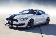 2016 Ford Mustang Shelby GT350 Images | Pictures and Videos