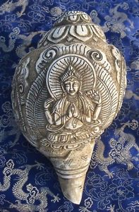 Buddha image carved on conch shell Gautama Buddha, Buddha Buddhism, Buddhist Art, Land Art, Buddhism Symbols, Hindu Rituals, Buddhist Philosophy, Spiritual Images, Street Art