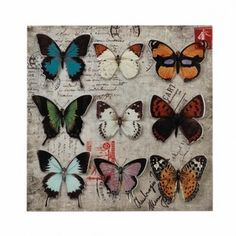 "Nine beautiful butterflies, with vividly colored cutout wings and perfect poise, are on display for you. This iron wall art features a postal backdrop. Item weight: 1.6 lbs. 15 7/8"" x 7/8"" x 15¾"" high"