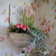 corner miniature flowers