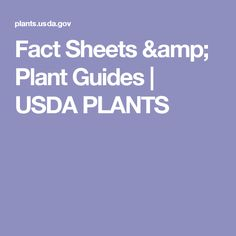 Fact Sheets & Plant Guides | 	USDA PLANTS
