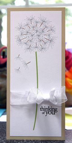 what a gorgeous giant dandelion!