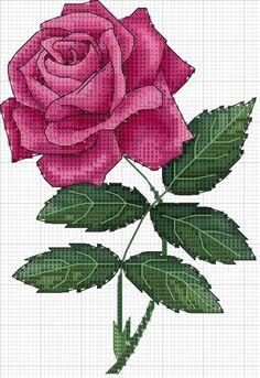 Cross Stitch Boarders, Cross Stitch Owl, Cross Stitch Cards, Cross Stitch Flowers, Cross Stitch Designs, Cross Stitching, Cross Stitch Embroidery, Cross Stitch Patterns, Chicken Cross Stitch