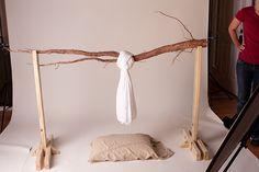 Branch setup