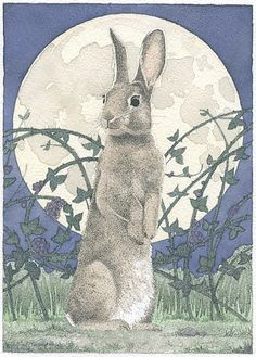 Carrie Wild is a fine artist and illustrator that creates unique ink-and-watercolor paintings of birds, bunnies, butterflies, and other creatures. Lapin Art, Watership Down, Motifs Animal, Rabbit Art, Bunny Art, Children's Book Illustration, Stars And Moon, Illustrators, Cute Animals
