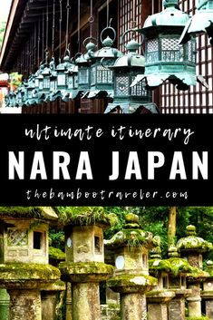 A Day Trip to Nara - A Suggested Itinerary - The Bamboo Traveler | Nara one day itinerary | Nara itinerary 2 and 3 days | what to do and see in Nara Japan | things to do in Nara Japan | how to get to Nara from Kyoto Japan | how to get around Nara | how to feed the deer in Nara | what temples to see in Nara | where to eat in Nara #Japantravel #Japan #Nara #travel #traveltips #solofemaletravel