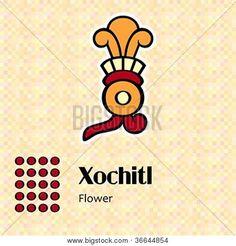 aztec, xochitl | Aztec calendar symbols - Xochitl or flower (20). Rating: 1
