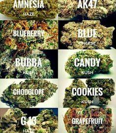 http://www.marijuanaplug.com    High quality grade marijuana  | Medical cannabis extracts  | Marijuana edibles  |  ...