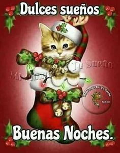 Imagenes Amor De Buenas Noches Para Facebook Christmas Night, Christmas Greetings, Merry Christmas, Christmas Ornaments, Good Morning In Spanish, Good Night Blessings, Happy Week, Good Morning Quotes, Christmas Pictures