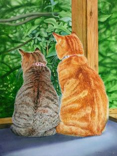Princess and Ernie Drew Strouble Kittens And Puppies, Cats And Kittens, Pretty Cats, Cute Cats, Herding Cats, Art Drawings Beautiful, Cat Statue, Cat Cards, Animal Projects