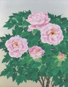 森田りえ子オフィシャルサイト | Gallery 森田りえ子作品集
