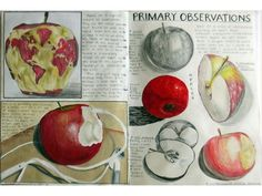 Amazing design drawing from natural forms - Google Search