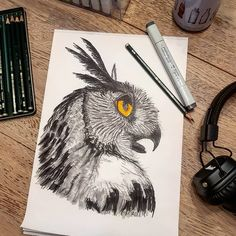 Eagle Owl 🦉it did this one with Copic Markers and pencils for the thin lines. Copic Marker Art, Copic Markers, Drawing Sketches, Drawings, Thin Line, Doodle Art, Happy New Year, Eagle, Owl