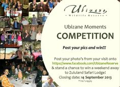 Post your photo's on our facebook page and stand the chance to win a Weekend Getaway! Weekends Away, Weekend Getaways, Your Photos, Safari, Competition, How To Apply, In This Moment, Facebook