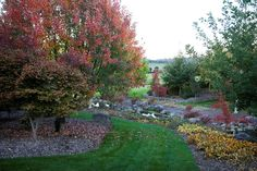Mayfield Garden - Autumn Colour
