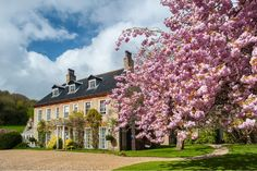 Find out more about this gorgeous stately home wedding venue in Norfolk. Country House Wedding Venues, Home Wedding, Roman Garden, Cottages For You, Garden Pavilion, Gate House, Marquee Wedding, Image Photography, Wedding Photography