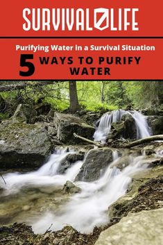 In a survival situation, clean water is a must. These five water purification methods will help you out. Learn how to purify water. Water Survival, Survival Life, Homestead Survival, Survival Food, Outdoor Survival, Survival Prepping, Survival Skills, Survival Hacks, Survival Quotes