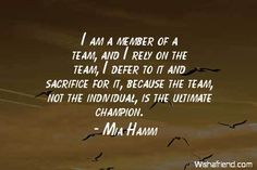 TEAMWORK QUOTES image quotes at hippoquotes.com