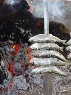 Espeto. Ricas sardinas a la brasa, tipico en torremolinos, Málaga, Spain