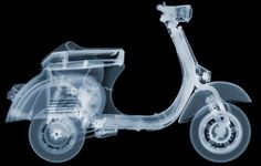 X RAY ART by NICK VEASEY – An Interesting Art!!